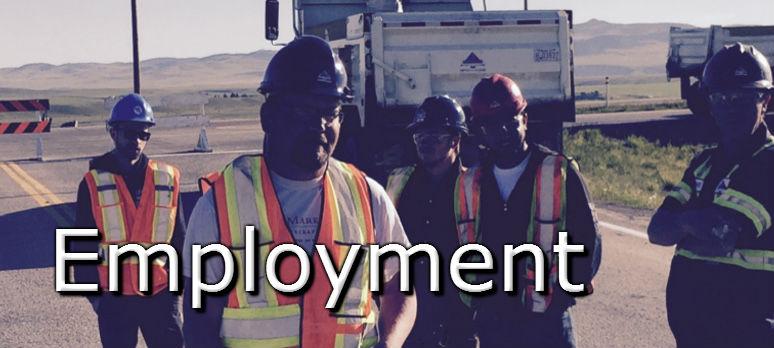 Employment_test_774x348